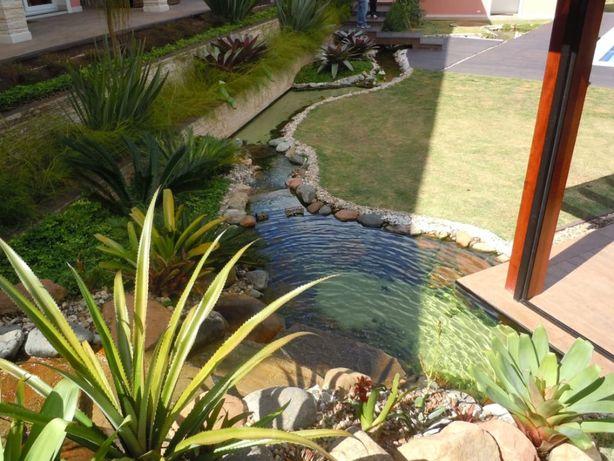 faço jardins e pinto casas (equipa de 1 ou 2 pessoas) a preço baixo !