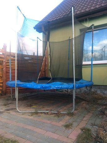 Trampolina ogrodowa 244