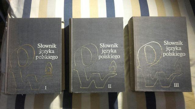 PROMOCJA Słownik Języka Polskiego PWN Komplet Książek 3 Tomy 3300stron