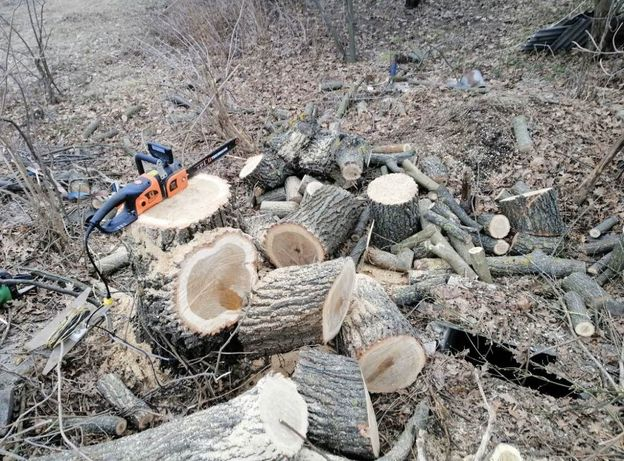 Спил деревьев уборка территории обрезка сада