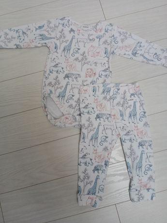 Newbie body leginsy 74 dla chłopca