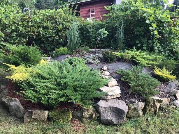 Działka rekreacyjna całoroczna, ogród ogródek działkowy RODOS
