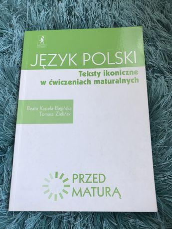 Jezyk polski - teksty ikoniczne w cwiczeniach