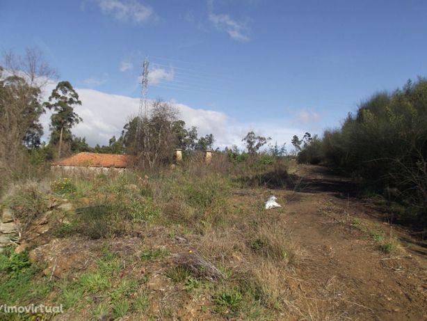 Terreno de 40 000 m2 com casa para reconstrução em São João de Ver par