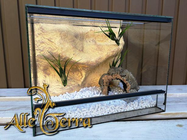Nowe szklane terrarium o pustynnym wystroju 40x30x30 cm AlleTerra