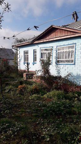 Продам дом в Выблях. Черниговский район