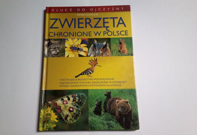 Paweł Czapczyk - Zwierzęta chronione w Polsce (twarda okładka)