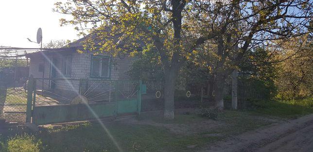 Продам Усадьбу (жилой дом) с. Мишурин Рог, Днепропетровская Обл.