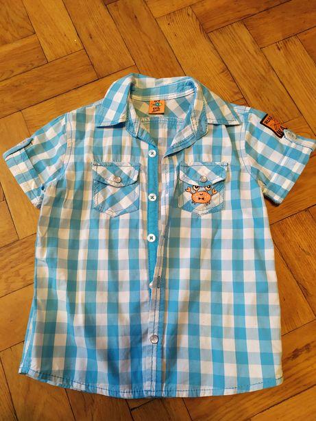 Trzy koszule dla chłopca roz 104 koszulki bluzki