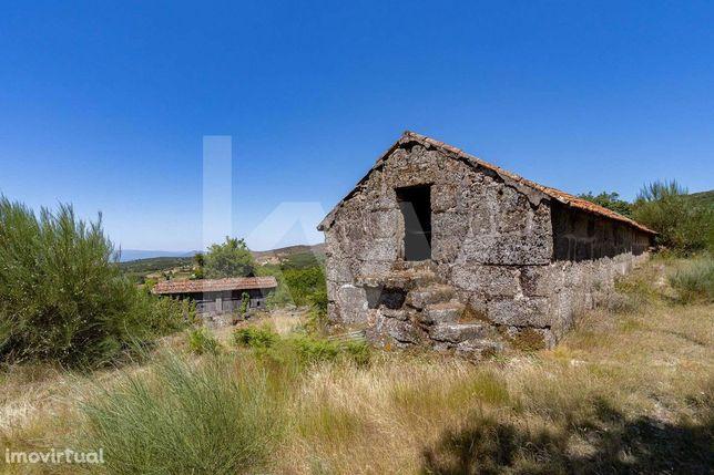 Quinta da Abogalheira -Terreno com ruína em Gouveia/Amarante