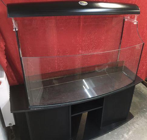 Akwarium hailea szafka