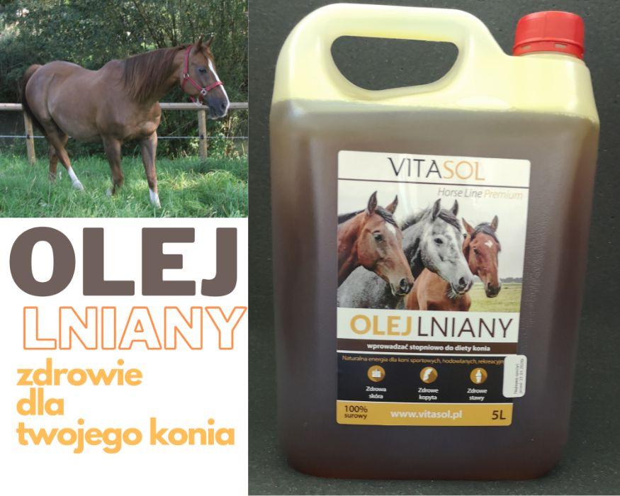 Olej lniany surowy dla zwierząt butla 5l