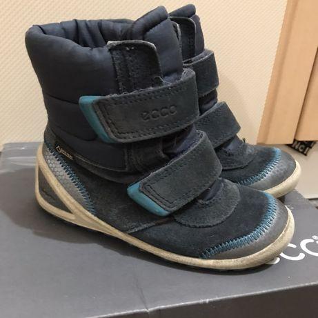 ботинки ecco сапоги сапожки