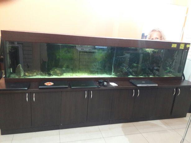 Продажа аквариума,рыб и оборудования к ним