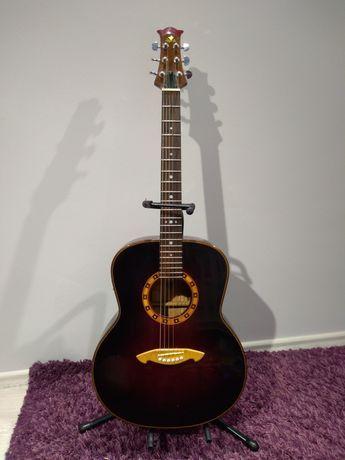 Buran guitars