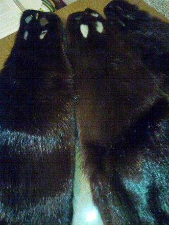 Шкуры  нутрии  выделаные  черного цвета.13 шт