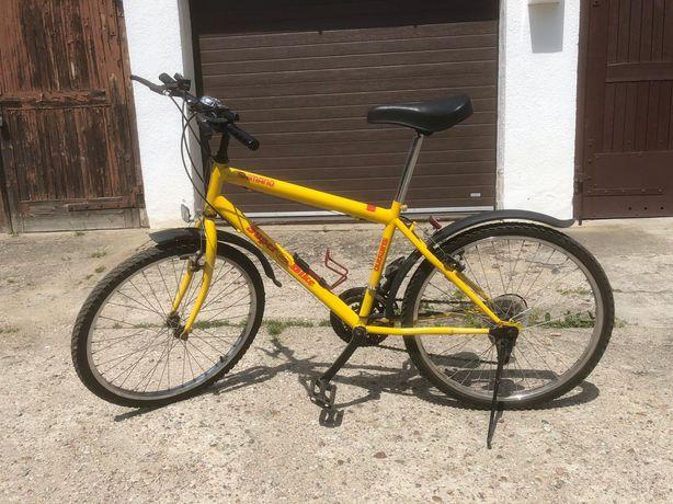 Rower młodzieżowy 24 c