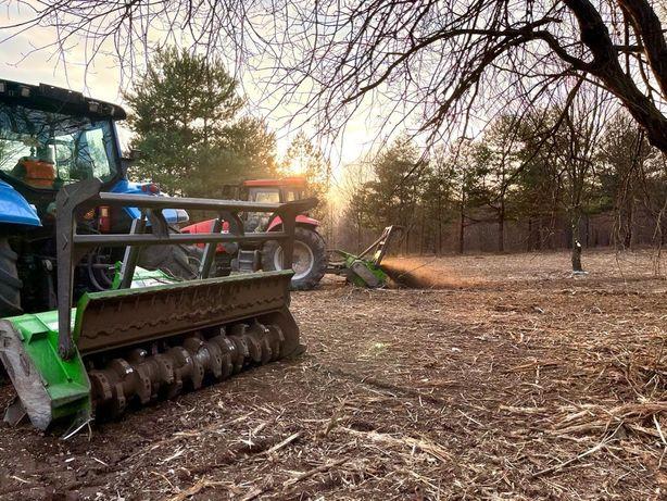 Wycinka drzew mulczowanie frezowanie drzew i krzewow