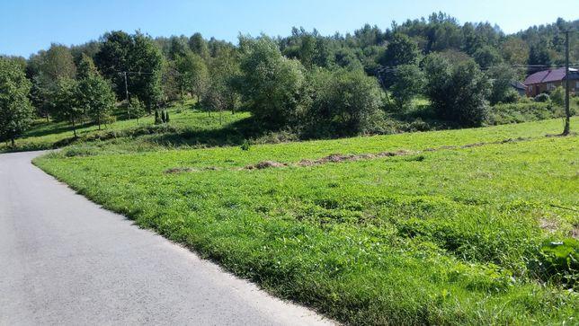 1,17 ha Idealna pod budowę stawu-Medynia Kańczudzka nowa cena