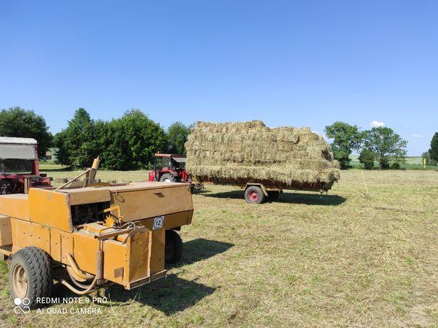 Siano w kostkach sezon 2021 słoma pszenna owsiana