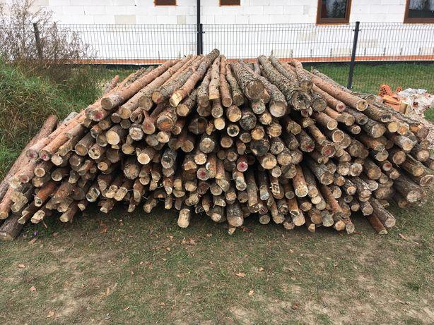 Stemple budowlane drewniane 3,1m