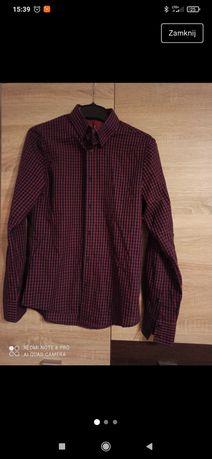 Bordowa koszula w kratę