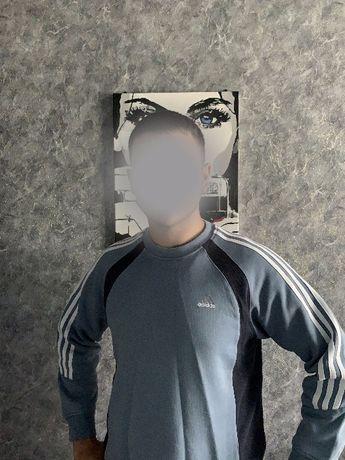 Кофта Adidas collection
