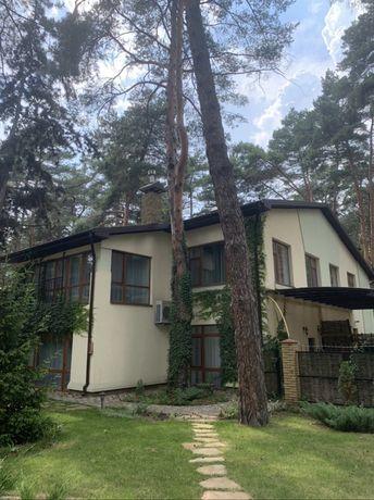 Аренда дома в лесу