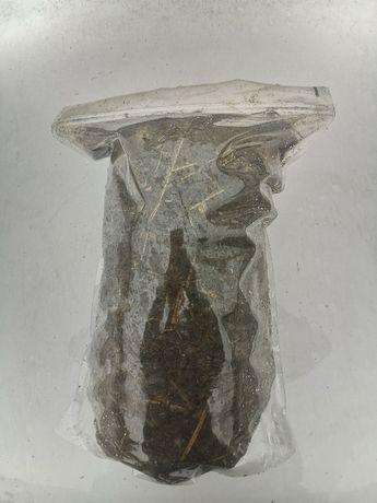 Obornik świeży bez ściółki czysty nawóz do roślin 5 l