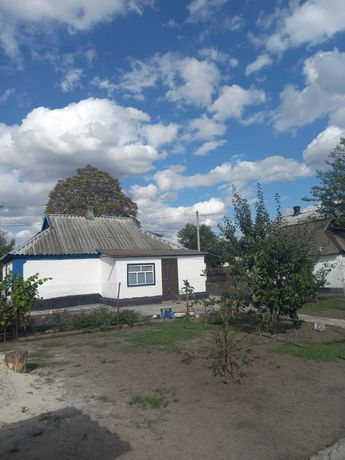Продам дом в селе Николаевка Петропавловского р-н СРОЧНО Хороший торг.