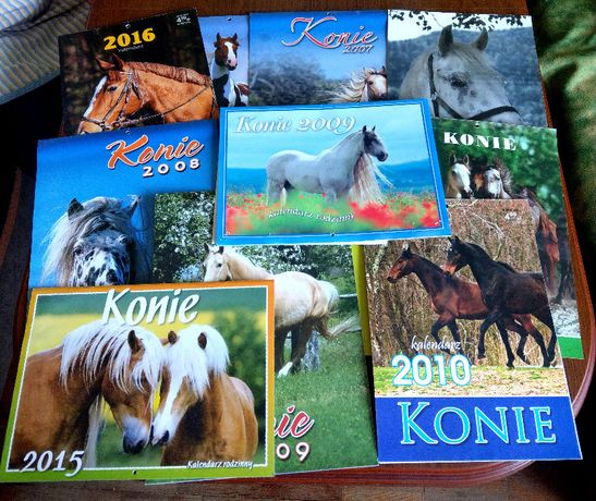 kalendarz koń konie jazda konna