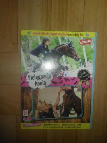Płyty o koniach ..