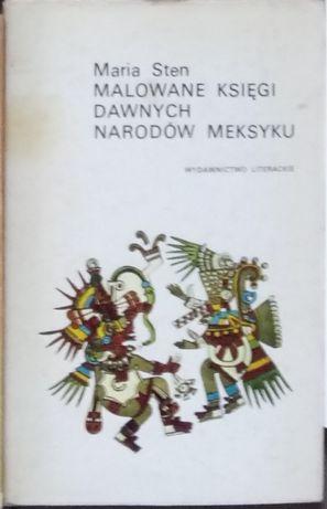 Książka Malowane księgi dawnych narodów Meksyku Archeologia