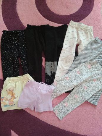 Штаны, лосины,шорты