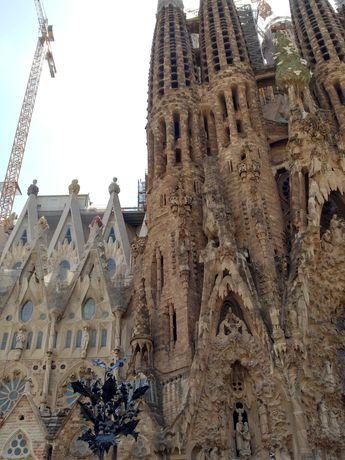 Сдам апартаменты в Барселоне