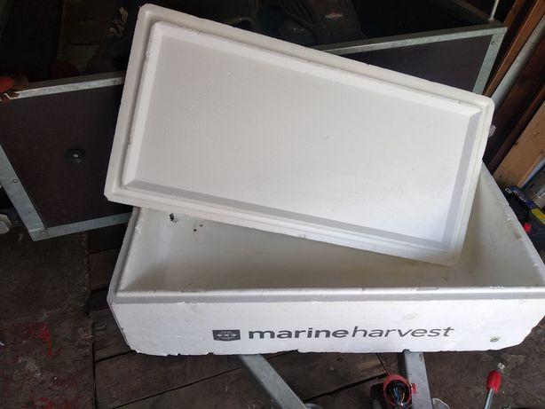 Ящик термо