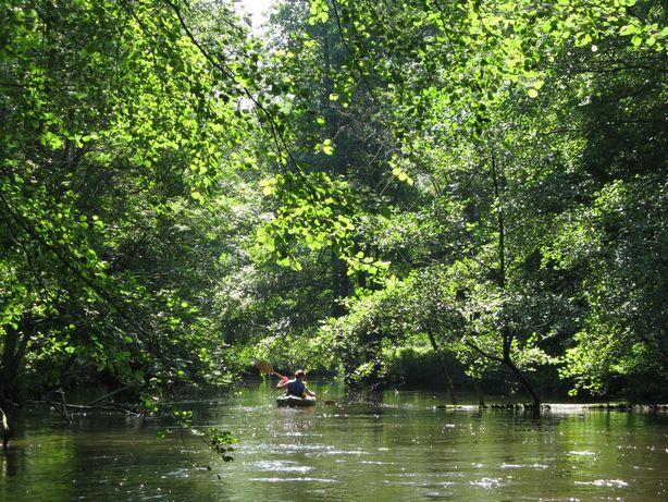 Spływy kajakowe rzeką Myślą