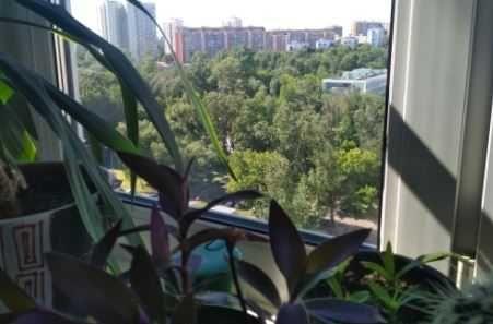 1 комнатная квартира. Прохоровский Сквер. ЦЕНТР.  22 000у.е.