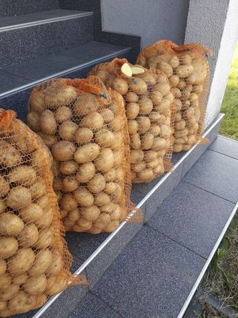 Ziemniaki od rolnika