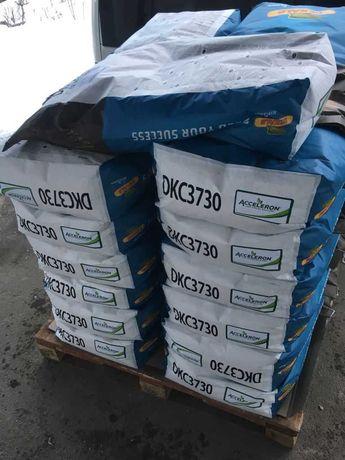 Монсанто ДКС 3730 насіння кукурудзи ФАО 280 семена кукурузы