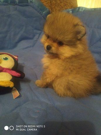 СУПЕР классная мини куколка !!!