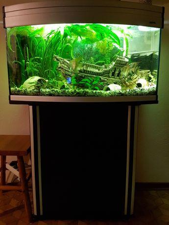 Akwarium Aquael 112l