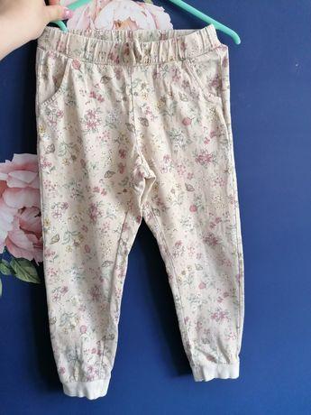 Spodnie dresowe newbie