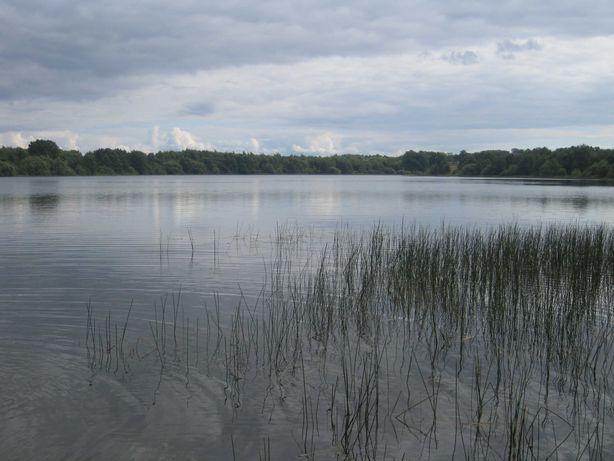 wydzierżawię działkę letniskową nad jeziorem