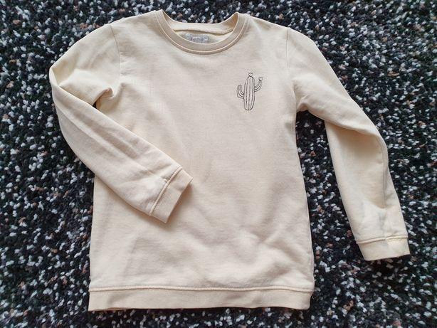 Newbie bluza 98/104