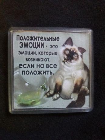 Магнит на холодильник котик кот шутка веселый анекдот