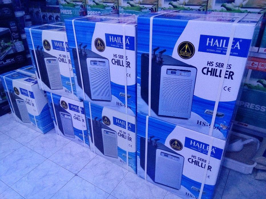 Refrigerador HAILEA aquario 1200L novo agua doce e salgada