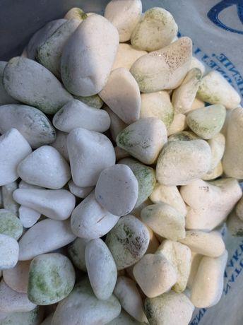 Kamienie podkład akwarium białe