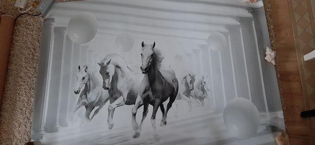 Piękna bdb jakości fototapeta 152 cm x 104 cm plus klej gratis konie