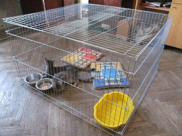 Закрытый манеж клетка для собак кошек котят птиц на прокат 100х100х60h